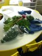 Sorting the organic veggies to go home to families