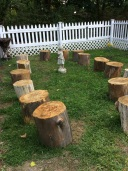 Log Stump Seating